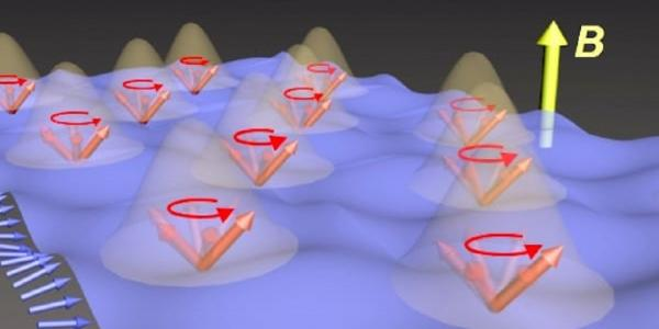 Rice University scientists observed Dicke cooperativity in a magnetic crystal in which two types of spins, in iron (blue arrows) and erbium (red arrows), interacted with each other. The iron spins were excited to form a wave-like object called a spin wave